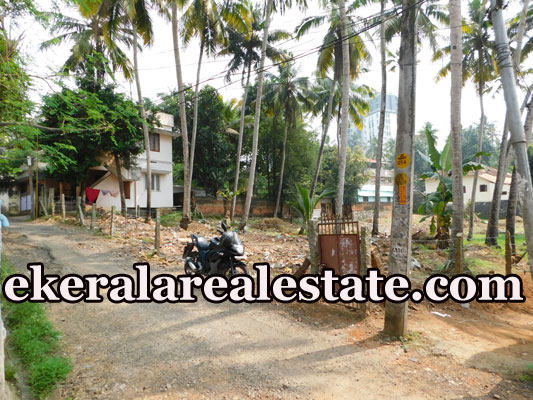 trivandrum Pananvila Paruthippara residential land 80 cent for sale kerala real estate properties Pananvila Paruthippara Trivandrum
