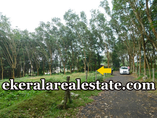 immediate house plot for sale at Sreekariyam Trivandrum Sreekariyam real estate kerala trivandrum