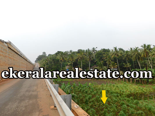 residential land for sale at Mukkola Vizhinjam Trivandrum Vizhinjam real estate kerala Vizhinjam