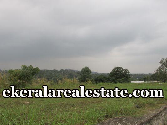 4 lakhs per Cent House Plots Sale at Manikanteswaram Peroorkada Trivandrum real estate kerala