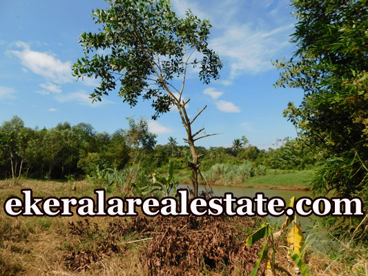 house land plot for sale at Kalamachal Vamanapuram Trivandrum real estate kerala
