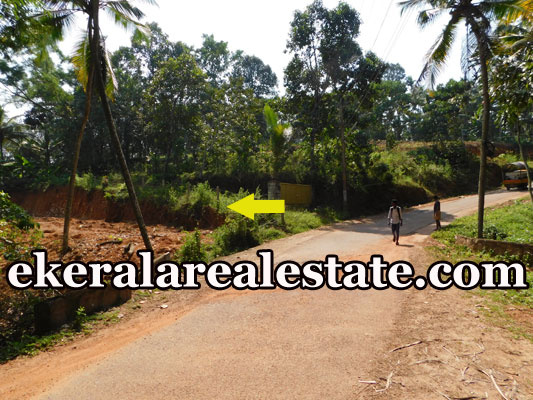 land plot for sale at Uriyacode Junction Vellanad Trivandrum Vellanad real estate kerala