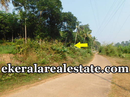 real estate trivandrum plot for sale at Aruvikkara Nedumangad Trivandrum properties sale