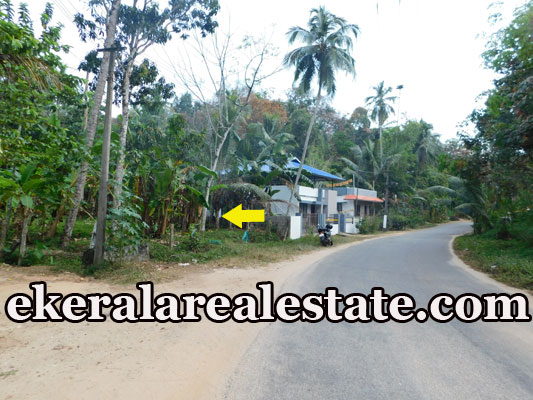 square land plot for sale at Kallar Ponmudi Trivandrum Kallar real estate properties sale