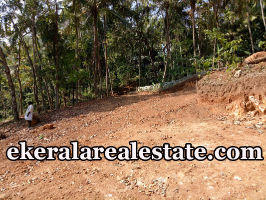 lorry plot for sale at Nettayam Trivandrum Nettayam real estate properties sale