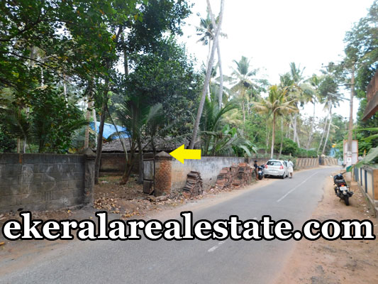 Cheap rate land plot for sale at Poovar Trivandrum Kerala Poovar real estate properties sale