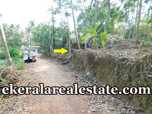 2 lakhs per Cent plot for sale a t Thoongampara Ooruttambalam Trivandrum kerala properties sale