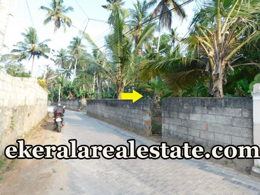 house plot for sale at Mannanthala Trivandrum Mannanthala real estate properties sale