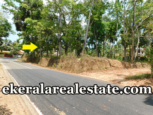 house plot for sale at Kattakada Trivandrum Kattakada kerala real estate properties sale