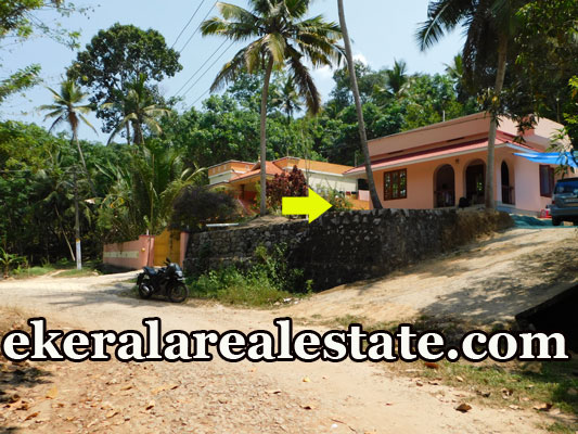 1000 sq.ft house for sale at Karipur Nedumangad Trivandrum Nedumangad real estate properties sale