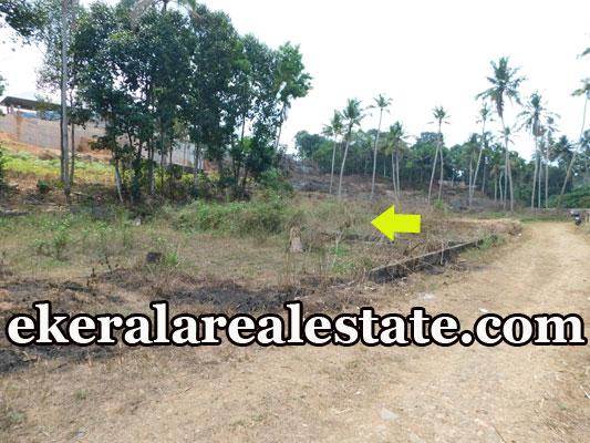 2 Acre lorry plot for sale at Powdikonam Sreekariyam Trivandrum real estate kerala