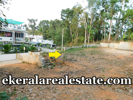 below 3 lakhs per Cent houuse plot for sale at Thirumala Perukavu Trivandrum Thirumala real estate properties