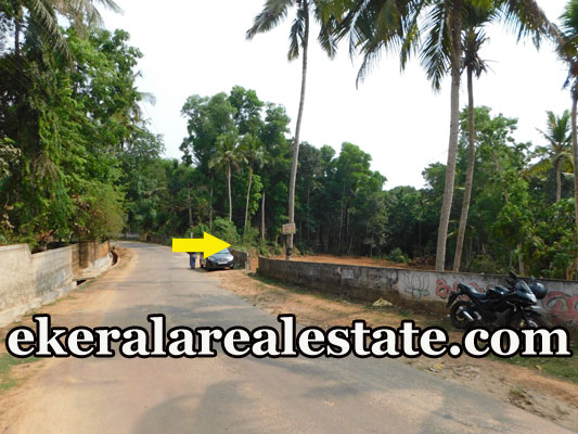 road frontage 3 lakhs per Cent land plot for sale at Neyyattinkara Trivandrum Neyyattinkara real estate properties