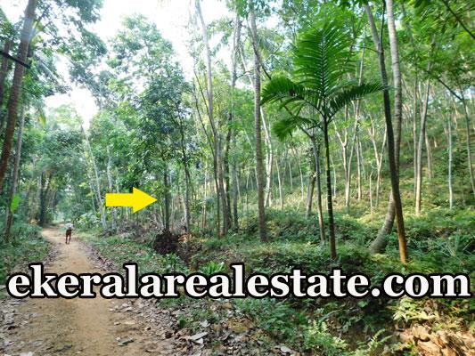 trivandrum land plot for sale at Manchavilakom Neyyattinkara real estate properties