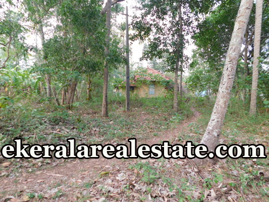 Residential Land For Sale at Venkulam Edava Varkala Trivandrum Varkala  real estate properties sale