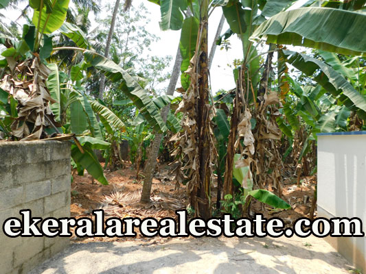 Residential Land Sale at Annoor Mangattukadavu Thirumala Trivandrum Thirumala real estate properties sale