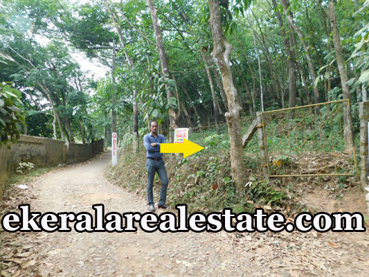 house plot for sale at Kattakada Trivandrum Kattakkada real estate properties sale