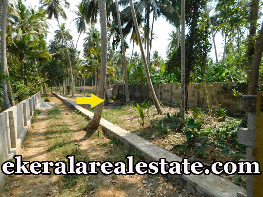 house plot for sale at Kalady karamana Trivandrum karamana real estate properties sale