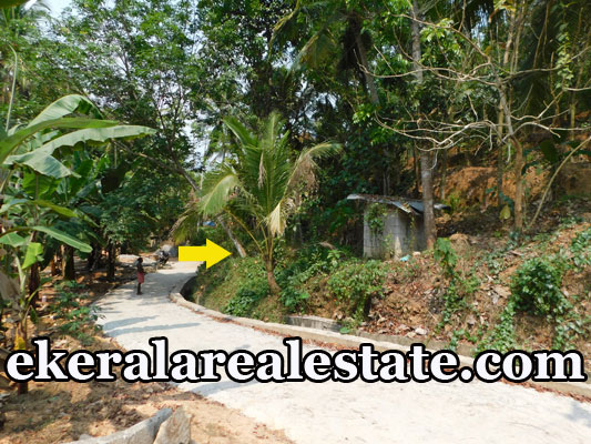 lorry plot for sale at Kollamkonam Peyad Trivandrum Peyad real estate properties sale