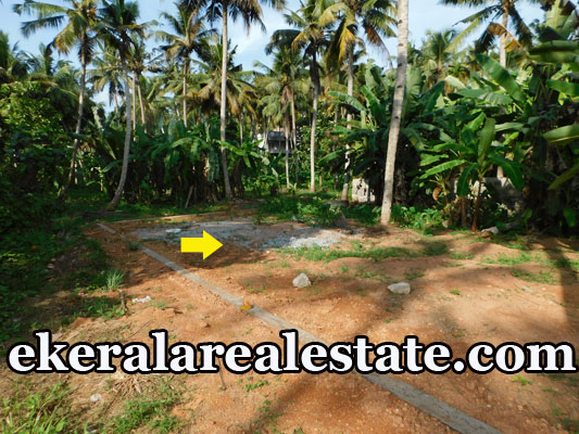 9 Cent land plot for sale at Ulloor Prasanth Nagar Trivandrum real estate kerala