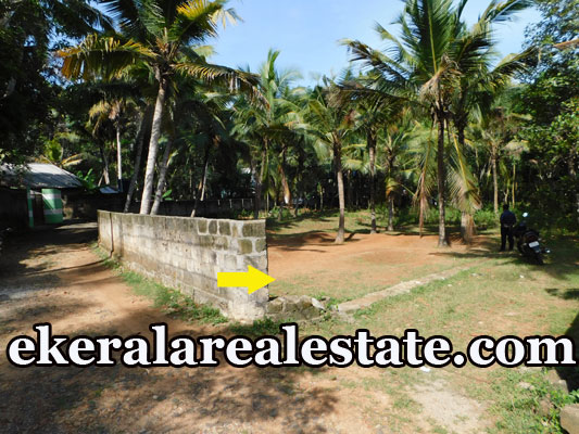 below 3 lakhs per Cent house plot for sale at Neyyattinkara Trivandrum real estate kerala