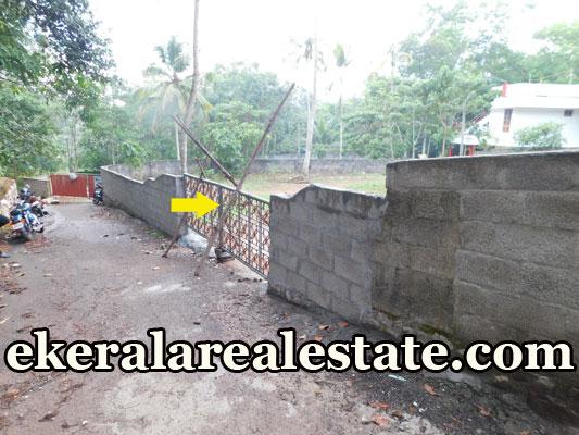 trivandrum real estate kerala Vattappara Nedumangad Route real estate kerala