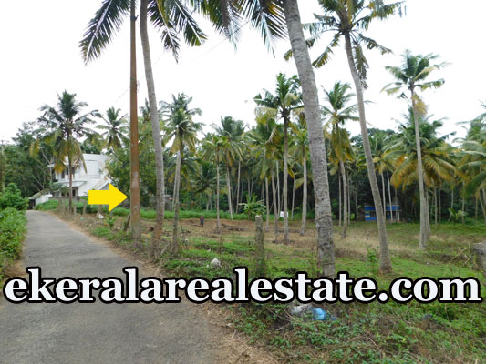 10 cents land plot sale at Balaramapuram trivandrum