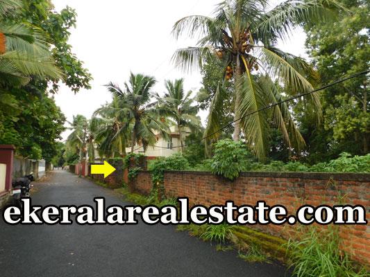 Below 9 lakhs per cent land sale at Sreekaryam