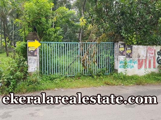 92 cents lorry plot sale in Vallikavu Karunagappally