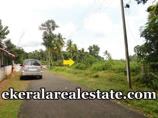 Kattakada cheap rate land for sale in Trivandrum