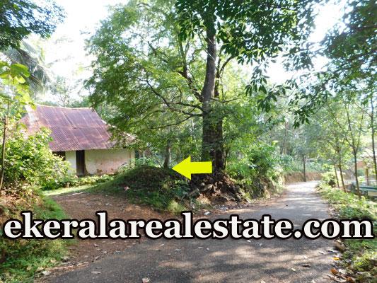 Vembanoor Aruvikkara  low price plot for sale