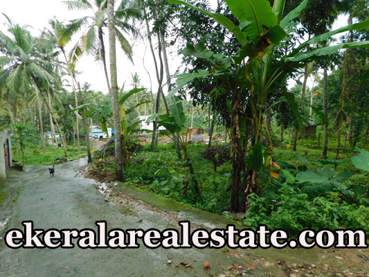 Low budget house plot sale in Peyad Trivandrum