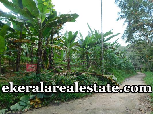 Vithura-Trivandrum-88-cents-land-plot-for-sale