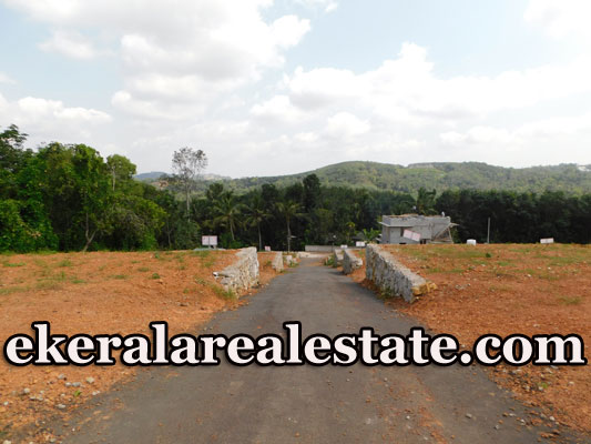7-cents-cheap-rate-land-sale-in-Puliyarakonam
