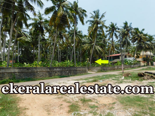 3 lakhs per cent  land plot for sale in Balaramapuram