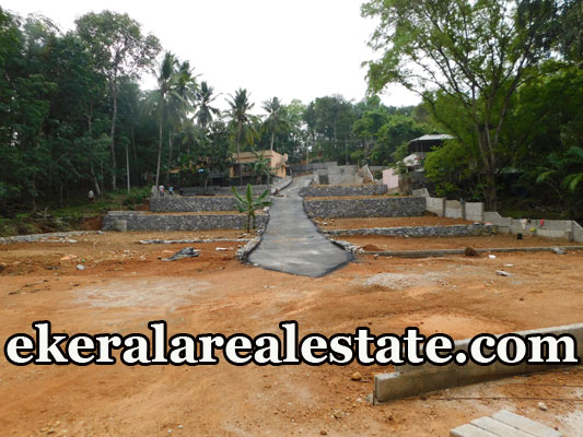 Chenkottukonam  Low budget land plot for sale