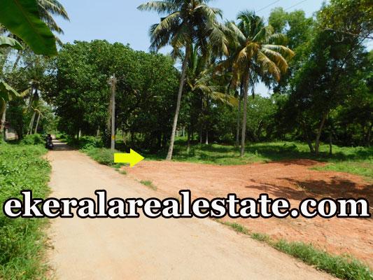 80 cents Cheap rate plot  sale in Kadakkavoor