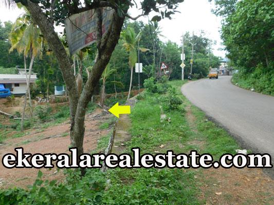 Low price 13 cents plot sale in Korani Attingal
