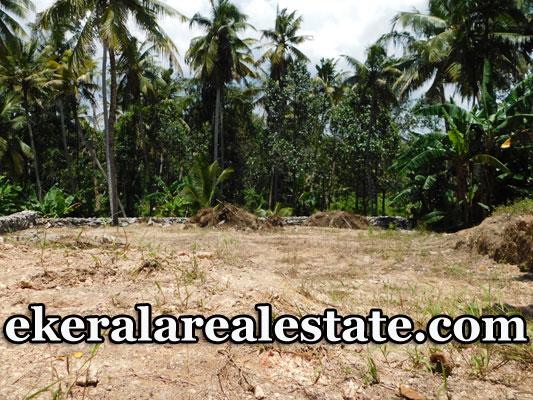 Pallipuram-5-cents-house-plot-sale-in-Trivandrum