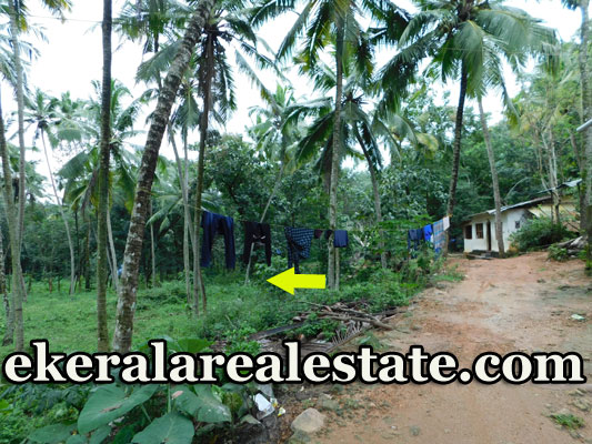 Below 1 lakhs per cent land plot sale in Vilappilsala