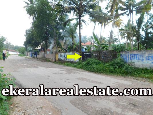 Road Frontage Land sale near Murukkumpuzha 8 lakhs per cent