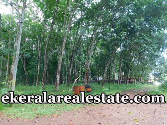 48 Cent lorry Land plot For Sale at Palode
