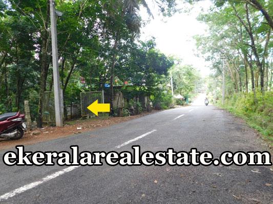 Low budget  Rubber Land Sale at Kattakada Kuttichal