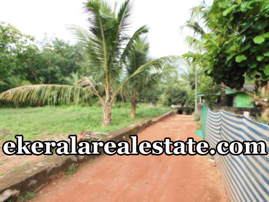 House plot sale in Koovalassery Maranalloor