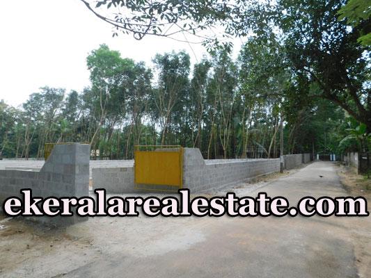 Chempakamangalam-Thonnakkal-residential-plot-for-sale