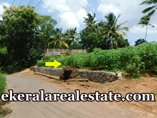 Road-Frontage-land-plot-Sale-at-Vattappara