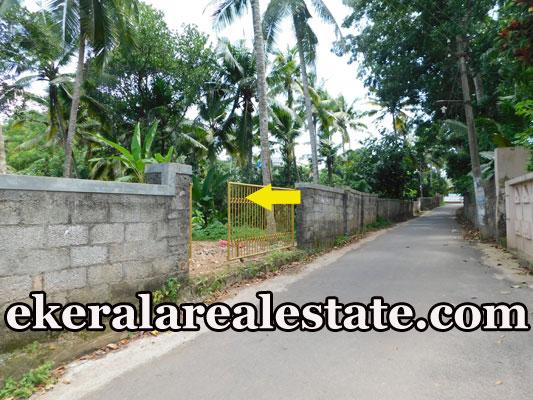 15-cent-slorry-plot-sale-in-Vattappara-Trivandrum