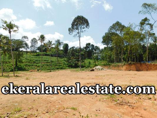 3-lakhs-per-cent-land-sale-in-Nedumangad-Trivandrum