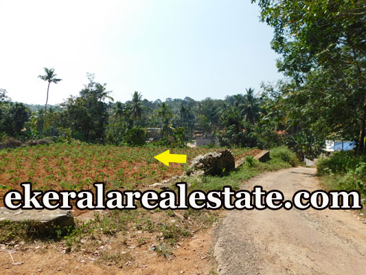 Residential Land Sale at Pulimathoor Pothencode