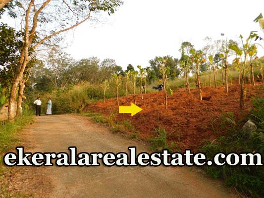 Residential Land Sale at Nannattukavu Pothencode